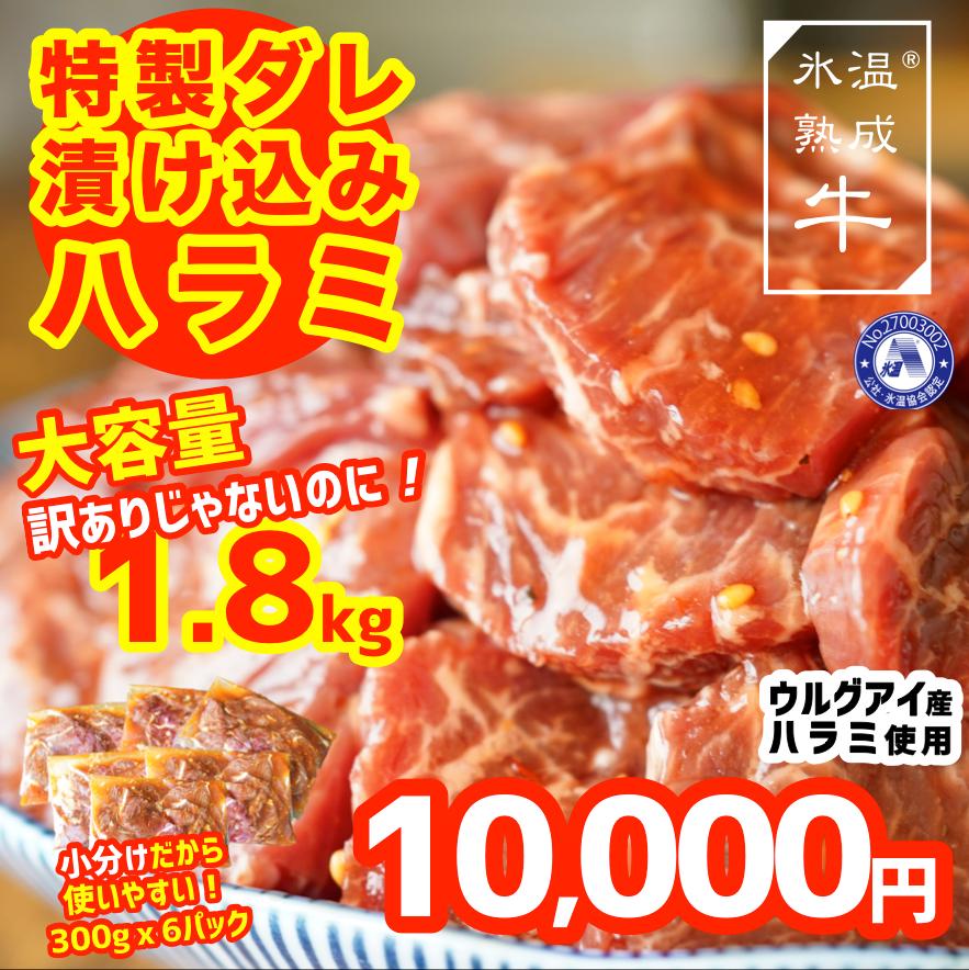 010B722 氷温(R)熟成牛 漬込みハラミ 訳ありじゃないのに1.8kg(300g×6)小分け便利
