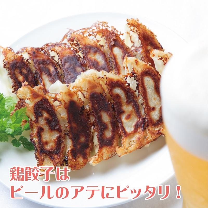 G055 さのうまみ鶏 餃子 48個(12個×4)