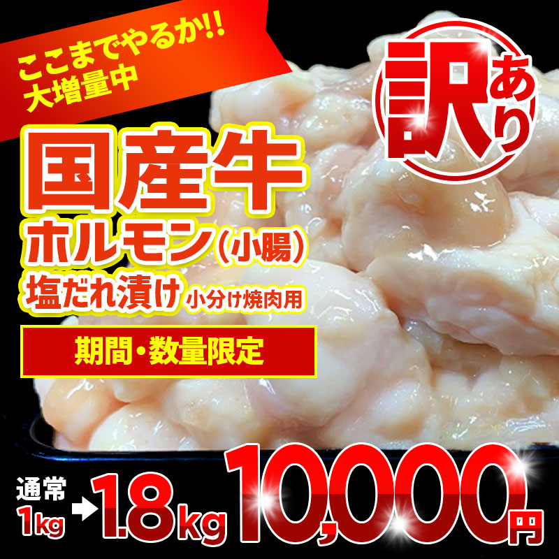 010B545 【期間限定増量】国産牛ホルモン(小腸)塩だれ漬け 小分け焼肉用 1.8kg(+800g)