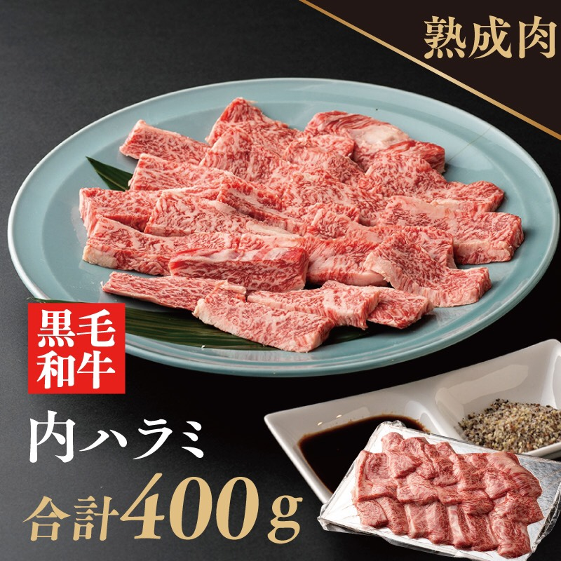010B516 熟成黒毛和牛 内ハラミ焼肉(希少部位インサイド)400g 梅塩・タレ付き