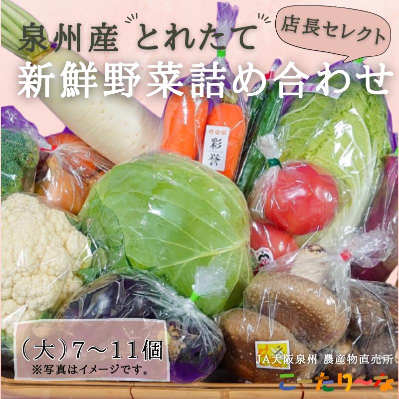 099H139 直売所店長セレクト季節の野菜セット(大)