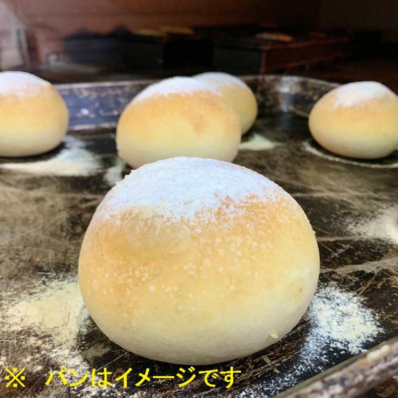 099G025 エシカル麦芽パン