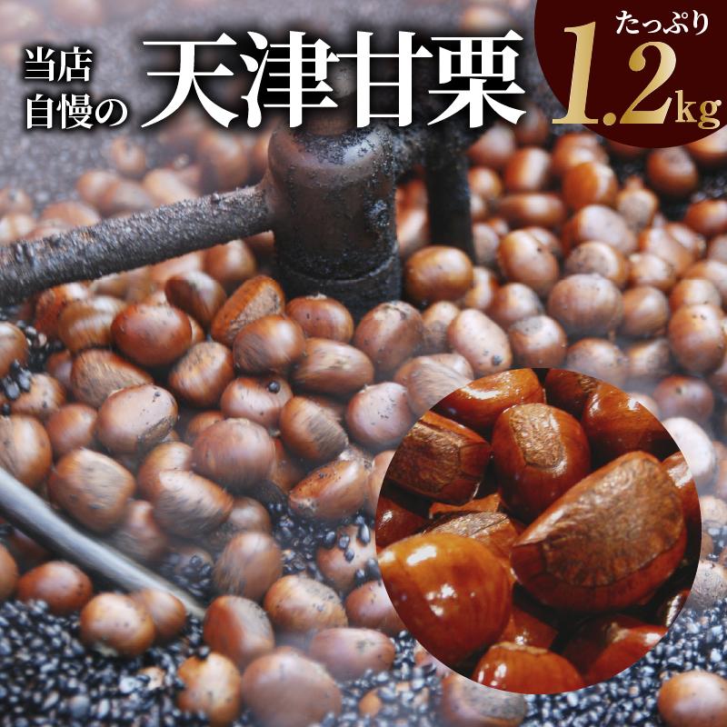 005A186 たっぷり1.2kg(400g×3袋)当店自慢の天津甘栗