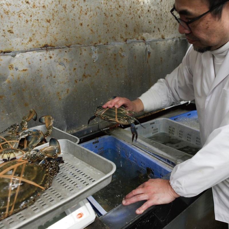 099H256 わたりがに料理 割烹松屋 蒸し蟹とかに飯「上」