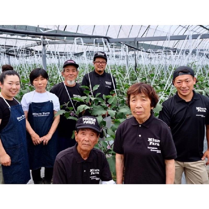 010B143 野菜ソムリエ厳選!季節の野菜セット