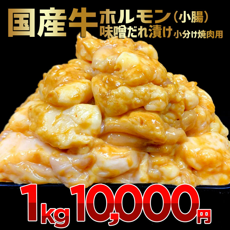 010B503 国産牛ホルモン(小腸)味噌だれ漬け 小分け焼肉用 1kg
