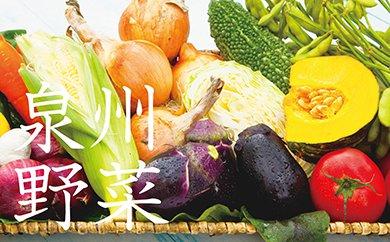 E011 季節の泉州野菜セット(大)半年セット(毎月・計6回発送)