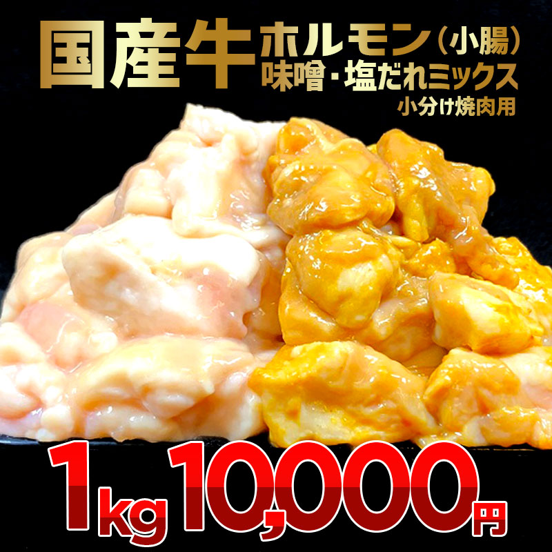 010B505 国産牛ホルモン(小腸)味噌・塩だれミックス 小分け焼肉用 1kg