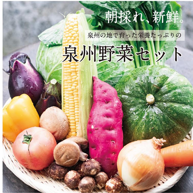 099Z002 【定期便】季節の泉州野菜セット半年(計6回)